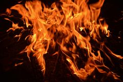 Flames from a fire on a black background Royalty Free Stock Images