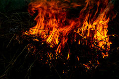 Flames of fire Royalty Free Stock Photography