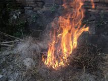 Flames of fire when burning dry grass trash royalty free stock photography