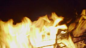 Flames in the fire close up.  stock footage