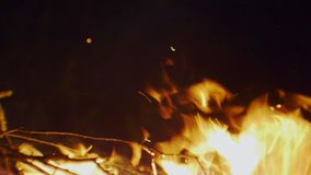 Flames in the fire close-up.  stock footage
