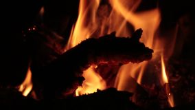 Flames of fire in a fireplace. stock video