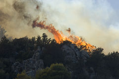 Flames - forest burning Athens. Flames spread in forest outside athens royalty free stock image