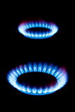 Flames of gas Royalty Free Stock Photo