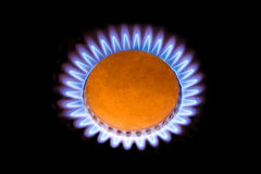 Flames from gas like a flower Royalty Free Stock Images