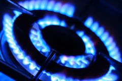 Flames of gas stove Stock Image