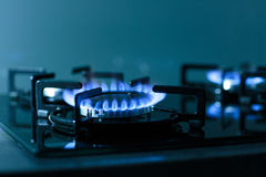 FLames of gas stove Stock Images