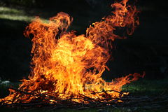 Flames. On grass. Bushes are burning.It has black and green background Stock Photos