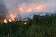 Flames on a grass mound. Flames blaze in a hay bale on a mound of rice which farmers in order to plowing Stock Images