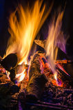 Flames. Insight into the fire and flames Royalty Free Stock Images
