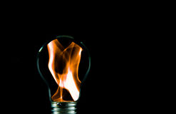 Flames in the light bulb. Stock Images