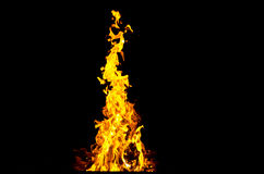 Flames lit the fire, warming his warmth in cold weather. Rules of safe breeding of fire. Flames lit the fire, warming his warmth in cold weather. Rules of safe Royalty Free Stock Photo