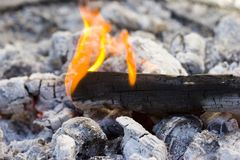 Flames of Live Fire Royalty Free Stock Photography