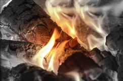 Flames of Live Fire Royalty Free Stock Image