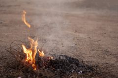 Flames and smoke from burning dry branches. royalty free stock image