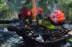 Flames smoke peppers on hibachi grill outdoors Stock Images