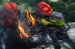 Flames smoke peppers on hibachi grill outdoors Royalty Free Stock Photos