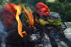 Flames smoke peppers on hibachi grill outdoors Stock Photo