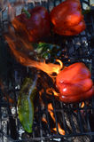 Flames smoke peppers on hibachi grill outdoors Royalty Free Stock Images