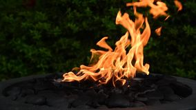 Flames swaying in a decorative outdoor fire pit.  4 stock video
