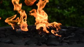 Flames swaying in a decorative outdoor fire pit.  2 stock video footage