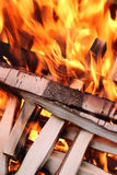 Flames whit wood Stock Images
