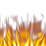 Flames on white. Hot orange flames over a white background Stock Photos