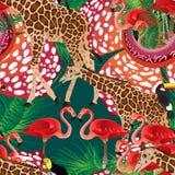 Flamigo giraffe seamless pattern Royalty Free Stock Photos