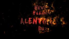 Flamin Valentine stock video footage