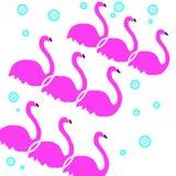 3 flamingów wzór z błękitnymi bąblami ilustracja wektor