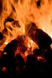 Flaming. Burning woods in flames and embers Royalty Free Stock Images