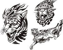Flaming big cats. Royalty Free Stock Photos