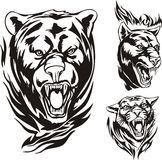 Flaming big cats. Heads of a bear, lion and panther. Flaming big cats. Vector illustration ready for vinyl cutting stock illustration