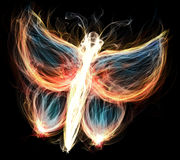 Flaming butterfly. A fiery butterfly with different colored flames Stock Images