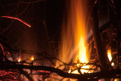 Flaming campfire closeup Stock Photography