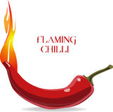 Flaming chilli Stock Images
