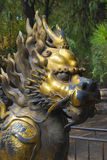 Flaming dragon. Gold dragon with flames on his back in a temple in asia Royalty Free Stock Photos