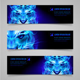 Flaming force. Set of banners with mystic tiger in blue flame Royalty Free Stock Images