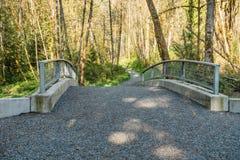 Flaming Geyser - Bridge. A view of a walking bridge at Flaming Geyser State Park in Washington State Royalty Free Stock Images