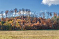 FLAMING HILL. Colorful autumn in the landscape of  natural environment Royalty Free Stock Images