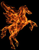 Flaming horse illustration. Flaming pegasus. Fire texture illustration. Mythology creature Stock Image