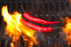 Flaming hot chilli peppers on bbq grill Stock Photos