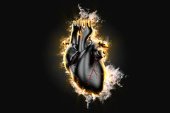 Flaming human heart. 3d illustration. Contains clipping path Stock Image