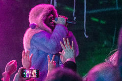 The Flaming Lips Royalty Free Stock Image