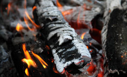 Flaming logs in bonfire detailed stock photos Stock Photo