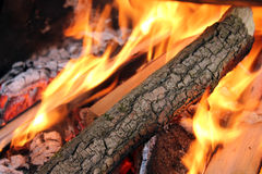 Flaming logs on fie Royalty Free Stock Images