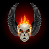 Flaming mutant skull. Mutant skull with orange flame and raised wings Royalty Free Stock Photo