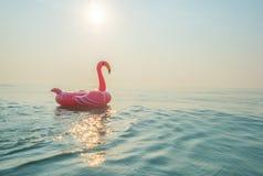 Flaming w morzu Zdjęcie Royalty Free