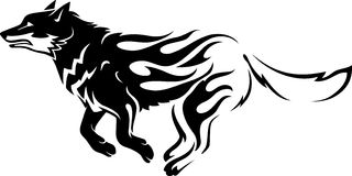 Flaming Wolf or Siberian Husky. Abstract fire trail body of a wolf or dog Royalty Free Stock Photos