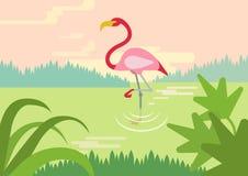 Flaminga bagna siedliska płaskiej kreskówki dzikich zwierząt wektorowi ptaki royalty ilustracja